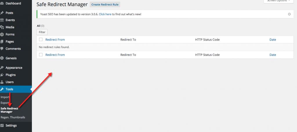 Safe Redirect Manager - Nothing set up yet.