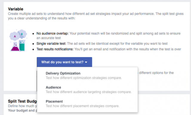 Social Media Ad Campaigns: Facebook Ad Campaign Test Variables
