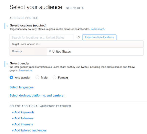 Social Media Ad Campaigns: Twitter Ad Campaign Audience Profile